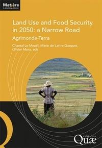 Chantal Le Mouël et Marie de Lattre-Gasquet - Land Use and Food Security in 2050: a Narrow Road - Agrimonde-Terra.