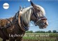 Alain Gaymard - Le cheval de trait au travail (Calendrier mural 2020 DIN A3 horizontal) - Exemples d'utilisation du cheval de trait (Calendrier anniversaire, 14 Pages ).