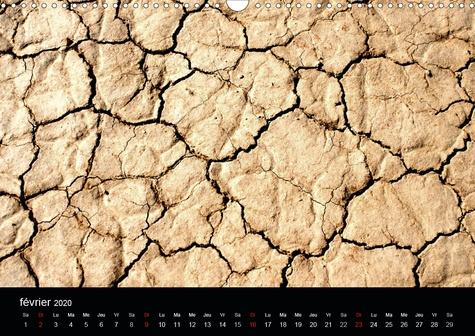 Le désert des Mojaves (Calendrier mural 2020 DIN A3 horizontal). Paysage du désert des Mojaves (Calendrier mensuel, 14 Pages )