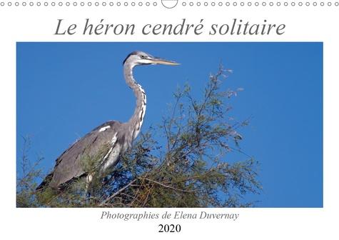 Le héron cendré solitaire (Calendrier mural 2020 DIN A3 horizontal). L'élégant héron cendré dans différentes situations de son quotidien. (Calendrier anniversaire, 14 Pages )