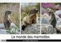 Michel Denis - CALVENDO Nature  : Le monde des marmottes en Haute Maurienne (Calendrier mural 2020 DIN A4 horizontal) - La vie trépidente de marmottes qui doivent faire le maximum de réserve de graisse en vue de passer une hibernation en toute sécurité. (Calendrier mensuel, 14 Pages ).