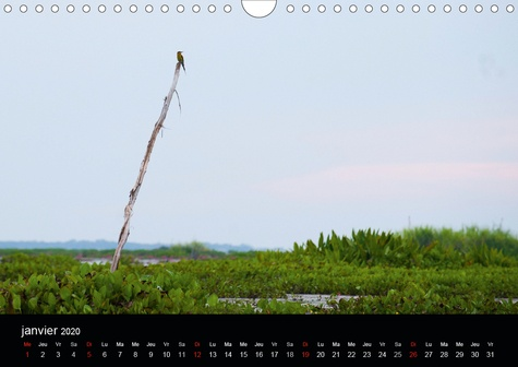 Le Thäle Noï (Calendrier mural 2020 DIN A4 horizontal). Lac thaïlandais dans la région de Tambon. (Calendrier mensuel, 14 Pages )