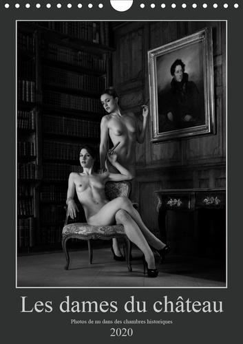 Les dames du château (Calendrier mural 2020 DIN A4 vertical). Photos érotiques dans des chambres historiques (Calendrier mensuel, 14 Pages )