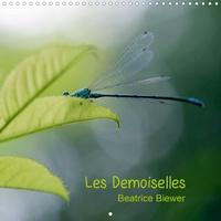 Béatrice Biewer - Les Demoiselles (Calendrier mural 2020 300 × 300 mm Square) - Le monde des libellules (Calendrier mensuel, 14 Pages ).