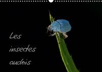 Joffrey Ache - Les insectes audois (Calendrier mural 2020 DIN A3 horizontal) - Photographies d'insectes du département de l'Aude (Calendrier mensuel, 14 Pages ).