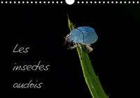 Joffrey Ache - Les insectes audois (Calendrier mural 2020 DIN A4 horizontal) - Photographies d'insectes du département de l'Aude (Calendrier mensuel, 14 Pages ).