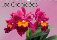 K.a. Monarchc - Les Orchidées (Calendrier mural 2020 DIN A3 horizontal) - Les orchidées exotiques (Calendrier mensuel, 14 Pages ).
