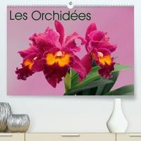 K.a. Monarchc - Les Orchidées(Premium, hochwertiger DIN A2 Wandkalender 2020, Kunstdruck in Hochglanz) - Les orchidées exotiques (Calendrier mensuel, 14 Pages ).