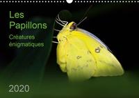 Thomas Zeidler - Les Papillons – créatures énigmatiques (Calendrier mural 2020 DIN A3 horizontal) - Portraits de douze papillons graciles aux couleurs magnifiques, originaires d'Afrique, d'Asie et d'Amérique du Sud (Calendrier mensuel, 14 Pages ).