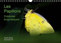 Thomas Zeidler - Les Papillons – créatures énigmatiques (Calendrier mural 2020 DIN A4 horizontal) - Portraits de douze papillons graciles aux couleurs magnifiques, originaires d'Afrique, d'Asie et d'Amérique du Sud (Calendrier mensuel, 14 Pages ).