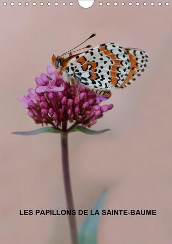 Les papillons de la Sainte-Baume (Calendrier mural 2020 DIN A4 vertical). Les magnifiques papillons de la Sainte-Baume (Calendrier mensuel, 14 Pages )