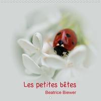 Béatrice Biewer - Les petites bêtes (Calendrier mural 2020 300 × 300 mm Square) - Les jolies petites bêtes de nos jardins (Calendrier mensuel, 14 Pages ).
