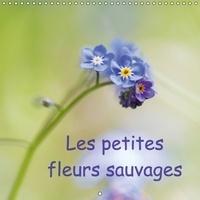 Véronique Brosseau Matossy - Les petites fleurs sauvages - La beauté des fleurs sauvages. Calendrier mural 2017.