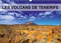 Jean-Luc Bohin - Les volcans de Tenerife - Volcans, plantes et pins parsèment les coulées de lave.