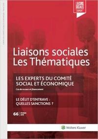 Sandra Limou - Liaisons sociales Les Thématiques N° 66, février 2019 : Les experts du comité social et économique - Le délit d'entrave : quelles sanctions ?.