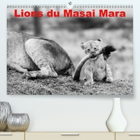 Michel Hagège - Lions du Masai mara(Premium, hochwertiger DIN A2 Wandkalender 2020, Kunstdruck in Hochglanz) - Photos N&B de lions libres et sauvages (Calendrier mensuel, 14 Pages ).