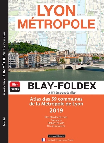 Le Lyon De L Atlas