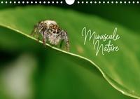 Olivier Laurent - CALVENDO Nature  : Minuscule Nature (Calendrier mural 2021 DIN A4 horizontal) - Bienvenue dans le monde des insectes de nos jardins (Calendrier mensuel, 14 Pages ).