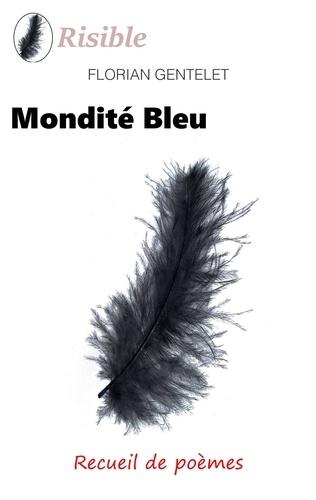 Florian Gentelet - Mondité bleu.