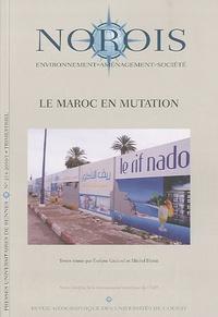Evelyne Gauché et Michel Desse - Norois N° 214, 2010/1 : Le Maroc en mutation.