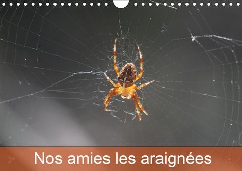 Nos amies les araignées (Calendrier mural 2020 DIN A4 horizontal). Le monde des araignées et des insectes (Calendrier mensuel, 14 Pages )