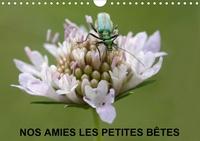 Martine Julien - Nos amies les petites bêtes (Calendrier mural 2020 DIN A4 horizontal) - Nos amies qui vivent dans l'herbe haute (Calendrier mensuel, 14 Pages ).