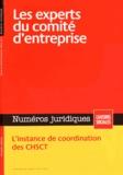 Michel Morand et Jean-Julien Jarry - Numéros juridiques Février 2015 : Les experts du comité d'entreprise.