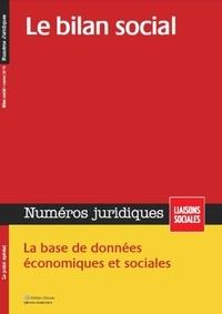 Sandra Limou et Marie Mourat - Numéros juridiques Janvier 2015 : Le bilan social.