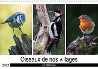 Michel Denis - CALVENDO Nature  : Oiseaux de nos villages en Gâtinais (Calendrier mural 2021 DIN A3 horizontal) - Photographies d'oiseaux que l'on peut voir en France (Calendrier mensuel, 14 Pages ).