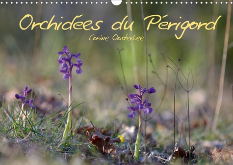 Orchidées du Périgord (Calendrier mural 2020 DIN A3 horizontal). Belles et fragiles fleurs sauvages (Calendrier mensuel, 14 Pages )