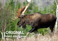 Philippe Henry - ORIGNAL. Géant Silencieux (Calendrier mural 2020 DIN A4 horizontal) - L'orignal du Canada au fil des quatre saisons. (Calendrier mensuel, 14 Pages ).