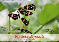 Thomas Zeidler - Papillons du monde, vus de près (Calendrier mural 2020 DIN A3 horizontal) - Portraits de douze papillons aux couleurs magnifiques, originaires d'Afrique, d'Asie et d'Amérique du Sud - macrophotographie. (Calendrier mensuel, 14 Pages ).