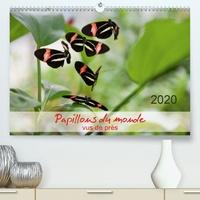 Thomas Zeidler - Papillons du monde, vus de près.