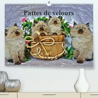 Sylvia Saüme - Pattes de velours (Calendrier supérieur 2020 DIN A2 horizontal) - Séance photos de chatons (Calendrier mensuel, 14 Pages ).