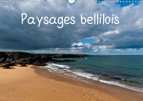 Paysages bellilois (Calendrier mural 2020 DIN A3 horizontal). Belle-île-en-mer, la Bien-Nommée ! (Calendrier mensuel, 14 Pages )
