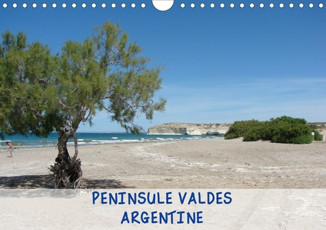 Françoise Catrin - PENINSULE VALDES - ARGENTINE (Calendrier mural 2020 DIN A4 horizontal) - Péninsule Valdes, réserve naturelle d'Argentine (Calendrier mensuel, 14 Pages ).