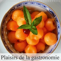Didier Sibourg - Plaisirs de la gastronomie (Calendrier mural 2020 300 × 300 mm Square) - La gastronomie ou l'art de faire de la bonne cuisine. (Calendrier mensuel, 14 Pages ).