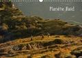 Hervé Le Gac - Planète Raid (Calendrier mural 2020 DIN A3 horizontal) - Les images de ce calendrier sont le reflet de ce qui fait la force des Raids Multisports de Nature: un ensemble d'émotions collectives, physiques et ludiques au coeur de la nature. (Calendrier mensuel, 14 Pages ).