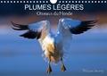 Philippe Henry - PLUMES LÉGÈRES. Oiseaux du Monde (Calendrier mural 2020 DIN A4 horizontal) - Treize photos d'oiseaux en action, photographiés avec l'oeil d'artiste de philippe Henry (Calendrier mensuel, 14 Pages ).