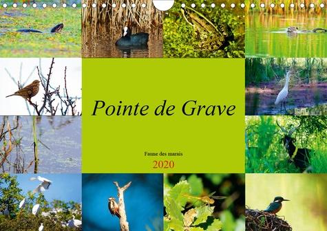 Pointe de Grave - Faune des marais (Calendrier mural 2020 DIN A4 horizontal). Un petit aperçu de la faune des marais de la Pointe de Grave (Calendrier mensuel, 14 Pages )