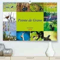 Dominique Duperou - dom's photos - Pointe de Grave - Faune des marais (Calendrier supérieur 2020 DIN A2 horizontal) - Un petit aperçu de la faune des marais de la Pointe de Grave (Calendrier mensuel, 14 Pages ).