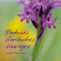 Corine Oosterlee - Portraits d'orchidées sauvages (Calendrier mural 2020 300 × 300 mm Square) - Les plus belles des fleurs... (Calendrier mensuel, 14 Pages ).