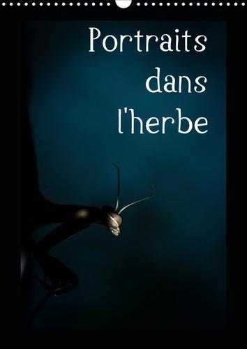 Portraits dans l'herbe (Calendrier mural 2020 DIN A3 vertical). Portrait d'insectes des Pyrénées dans leur environnement (Calendrier mensuel, 14 Pages )