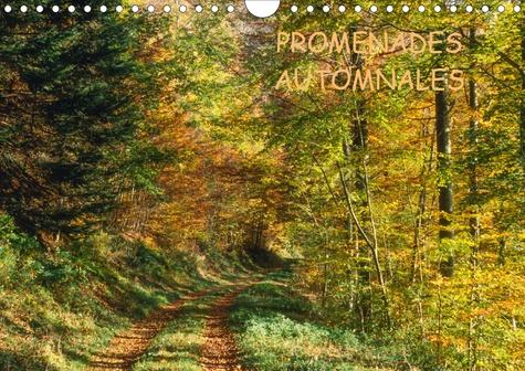 PROMENADES AUTOMNALES (Calendrier mural 2020 DIN A4 horizontal). Une saison à nulle autre pareille, l'automne (Calendrier mensuel, 14 Pages )
