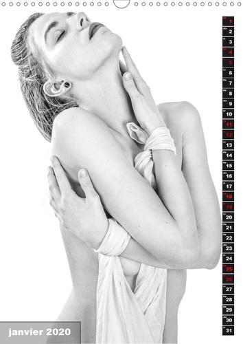 RÊVES PUDIQUES (Calendrier mural 2020 DIN A3 vertical). Jeune femme nue mais pudique cachée par ses bras ou un voile. (Calendrier mensuel, 14 Pages )