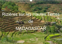 Francis Goussard - Rizières sur les Hautes Terres de Madagascar (Calendrier mural 2020 DIN A3 horizontal) - Paysages de rizières en terrasses de Madagascar (Calendrier mensuel, 14 Pages).
