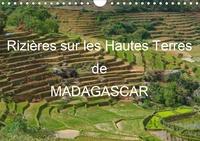 Francis Goussard - Rizières sur les Hautes Terres de Madagascar - Paysages de rizières en terrasses de Madagascar.