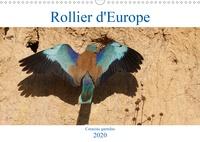 Djamal Makhloufi - Rollier d'Europe (Coracias garrulus) (Calendrier mural 2020 DIN A3 horizontal) - Découvrez le rollier d'Europe, un oiseau bleu méditerranéen magnifique. (Calendrier mensuel, 14 Pages ).