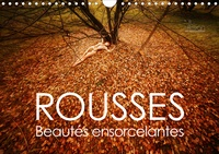 Ulrich Allgaier (www.ullision.com) - ROUSSE - beautés ensorcelantes (Calendrier mural 2020 DIN A4 horizontal) - Beautés naturelles de la magie des cheveux roux (Calendrier mensuel, 14 Pages ).
