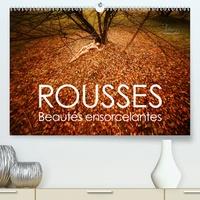 Ulrich Allgaier (www.ullision.com) - ROUSSE - beautés ensorcelantes (Calendrier supérieur 2020 DIN A2 horizontal) - Beautés naturelles de la magie des cheveux roux (Calendrier mensuel, 14 Pages ).